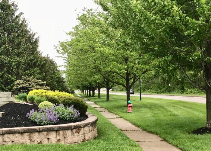LakeshoreDrStreetview